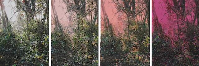 © Ramon Surinyac | 184 Solar | Galería 3 Punts | Art Madrid'15 | Feria de Arte Contemporáneo | ARTE A UN CLICK | A1CFerias
