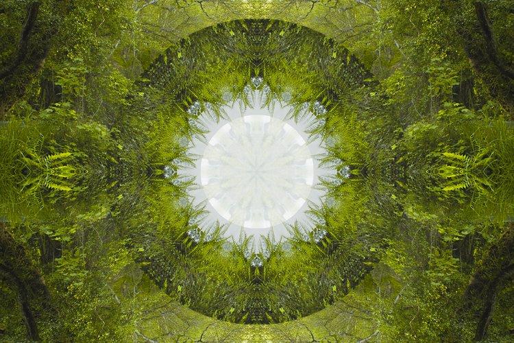 © Ana Kala |Into The Trees | Serie Geometrías Sagradas | Doll Ida | MMM | MUJERES MIRANDO MUJERES | arte a un click | A1CProyectos