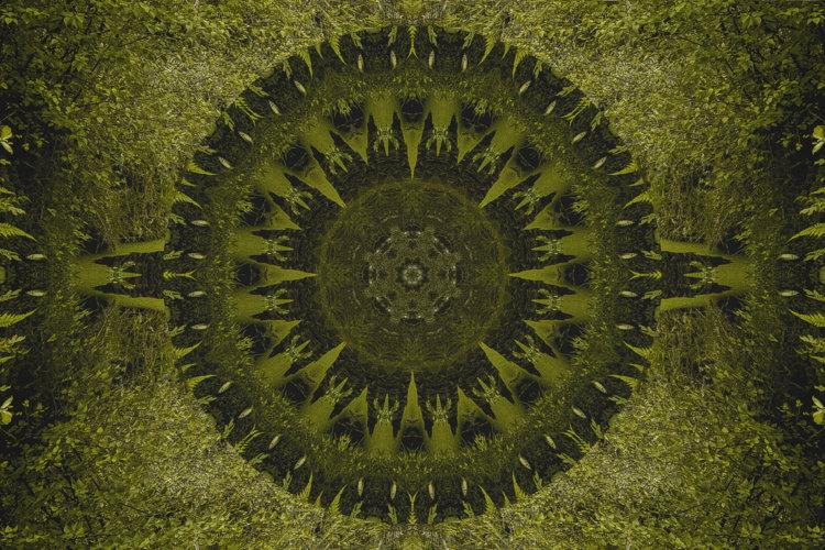 © Ana Kala | Into The Trees-16 | Serie Geometrías Sagradas | Doll Ida | MMM | MUJERES MIRANDO MUJERES | arte a un click | A1CProyectos