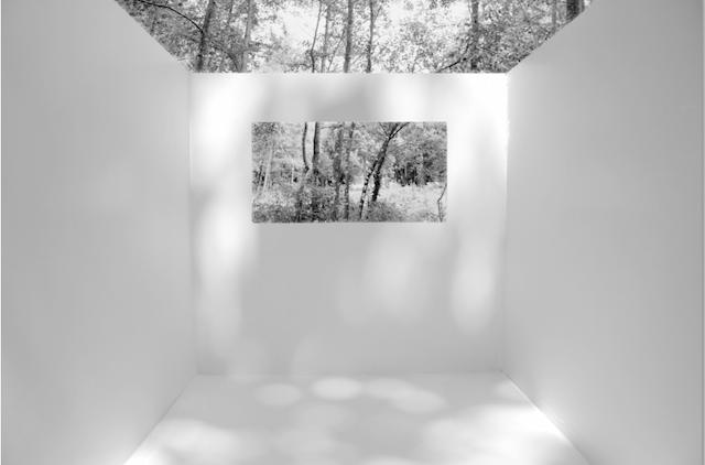 © Amaya Hernández | Resistencias | exposición | fotografía | Galería Astarté | Arte a un Click | A1CExpos