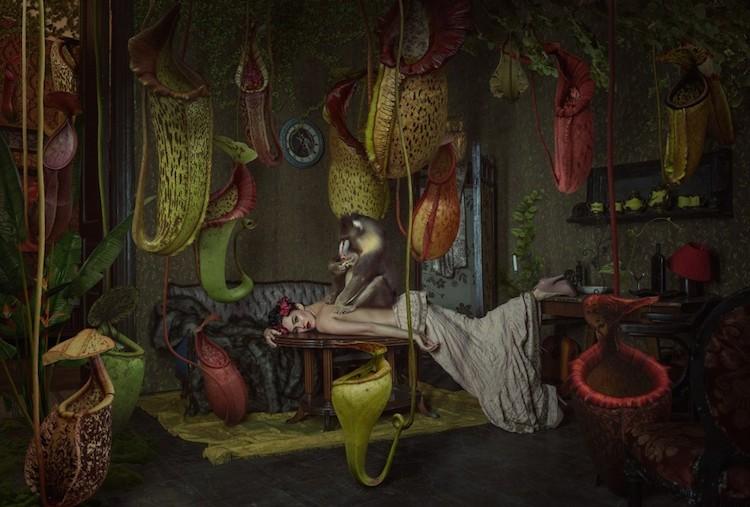 © Elena Vizerskaya aka Kassandra | fotografía digital | fotomontaje | ate a un click | A1CGalería