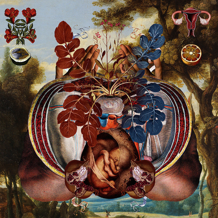 © Dividus | pintura | ilustración | surrealismo | arte a un click | A1CGalería