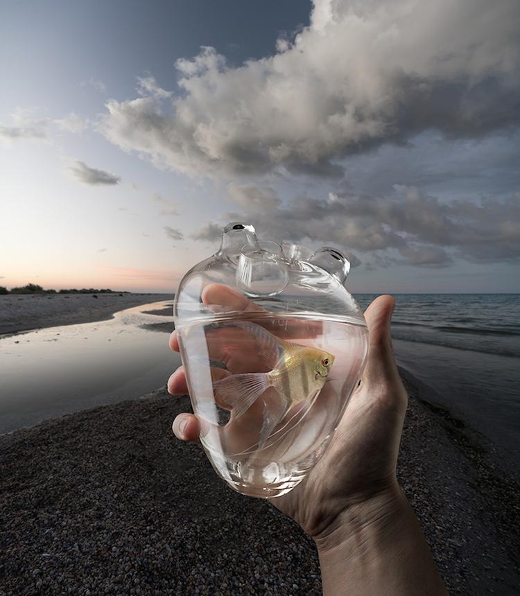 © Mikhail Batrak   fotografía   retoque digital   fotomontaje   Arte a un Click   A1CGalería