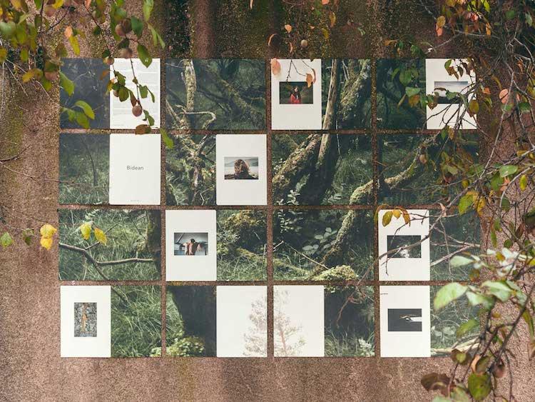 © Miren Pastor | Pared | Semíramis González | Exposición | En lo salvaje | Arte a un Click | A1CExpos