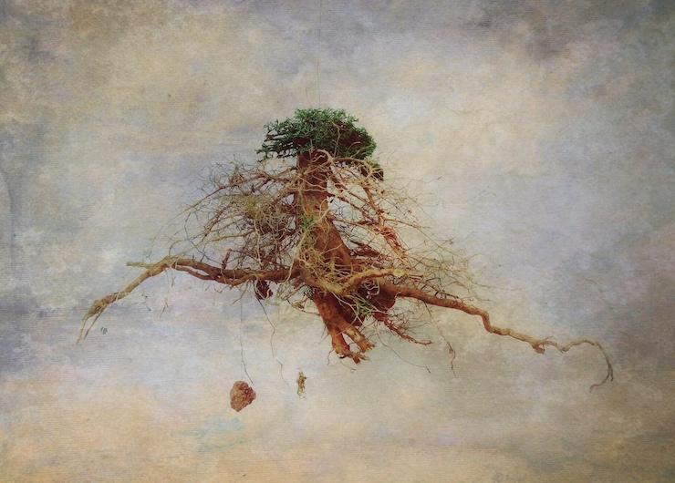 © Jose Luis López Moral | Grundkreuz | Art&Breakfast | Arte a un Click |A1CFerias