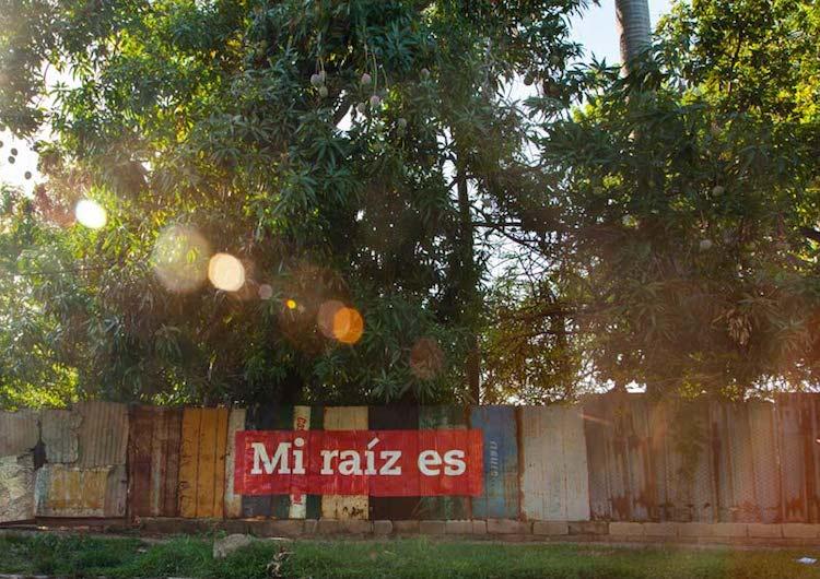 © Boa Mistura | Mi raiz es | Ponce+Robles | PHE16 | Arte a un Click |A1CExpos