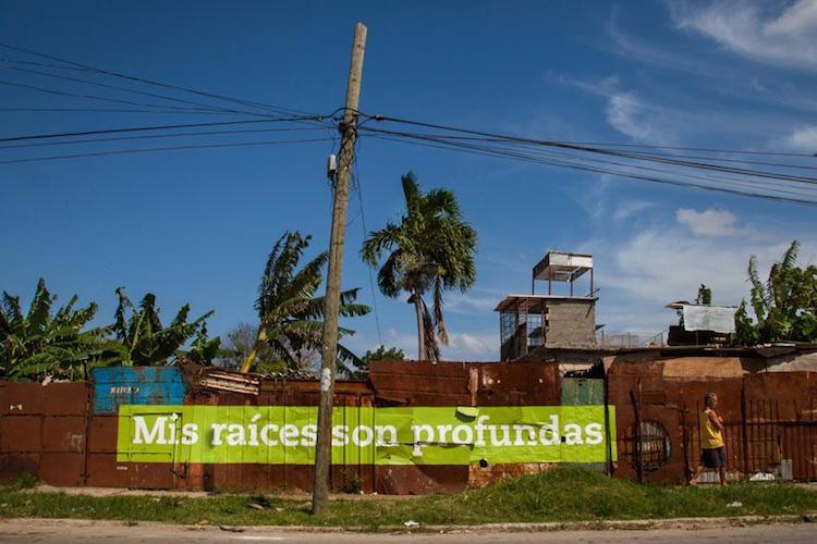 © Boa Mistura   Mi raiz es   Ponce+Robles   PHE16   Arte a un Click  A1CExpos