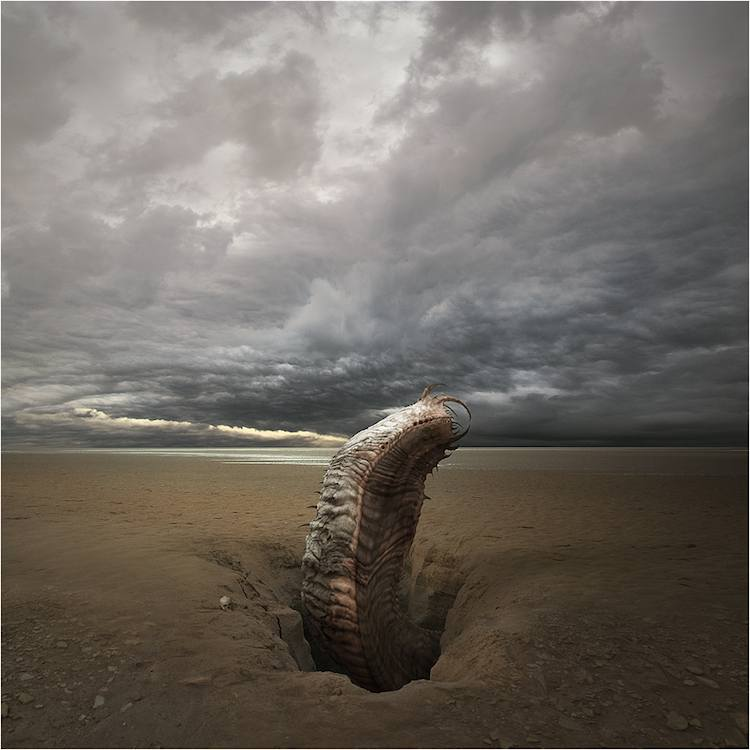 © Michał Klimczak | Digital Art | Arte a un Click | A1CArtes