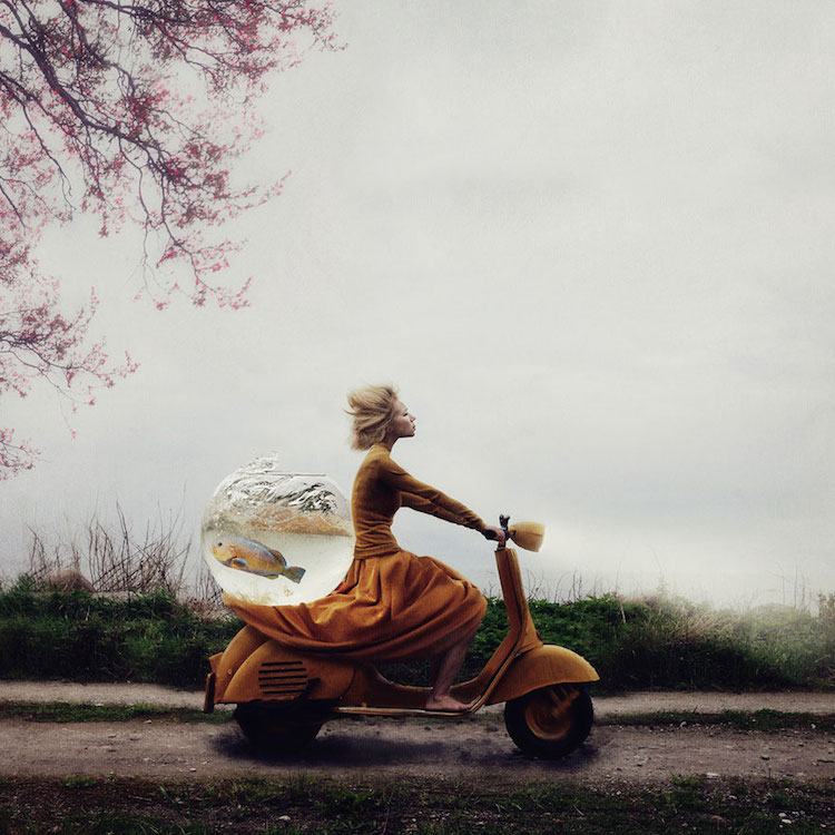© Kylli Sparre | Fotografía | Arte a un Click | A1CArtes