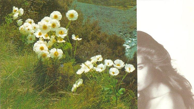 © Annita Klimt | Cultur3 Club | MMM | Arte a un click | A1CFerias