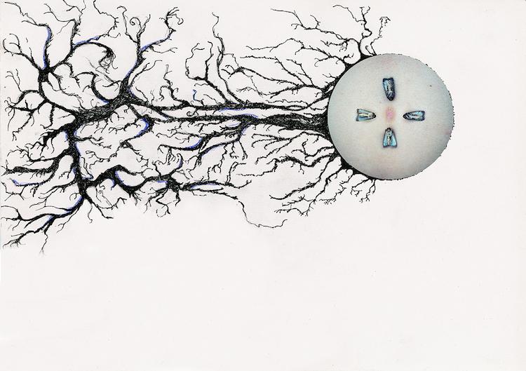 © Leila Amat | Gran Hado | Libro de Autor | Arte a un Click | A1C