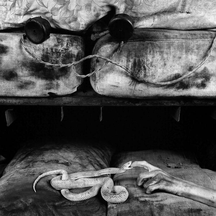 © Roger Ballen |Cámara Oscura | Arte a un Click