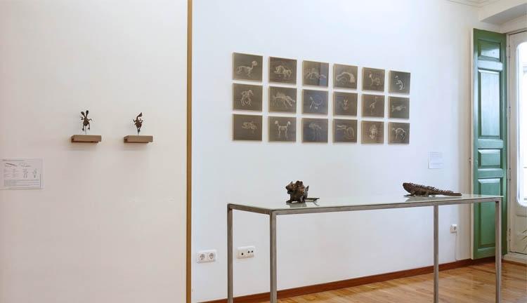 © Laura Salguero | Exceptiología | Galería La Gran | Arte a un Click