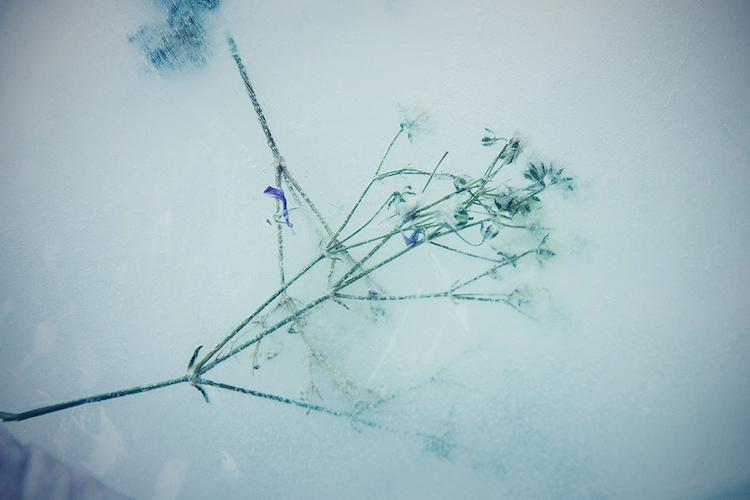 © Irene Cruz | Galería Theredoom | Arte a un Click