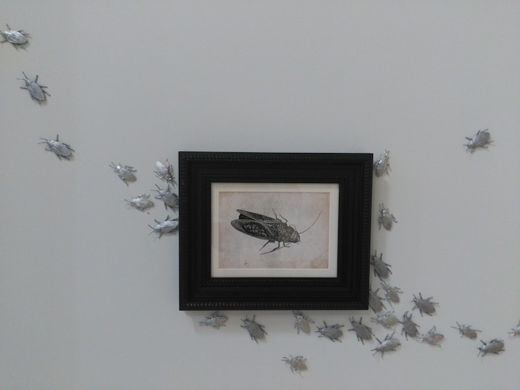 Paula Noya | Sala Alaterarte | Arte a un Click