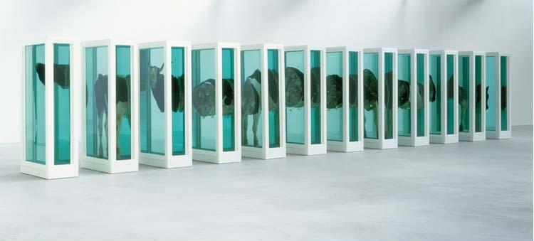 Arte Contemporáneo | Damien Hirst | Arte a un Click