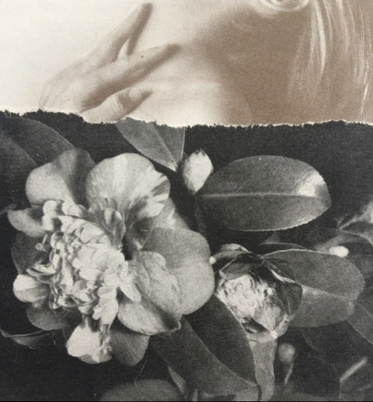 © annitaklimt | Laura San Segundo | Oscar García | eventos | Arte a un click