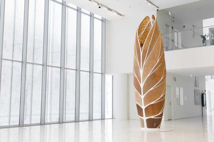 © Neri Oxman | arte textil | biología | Arte a un Click
