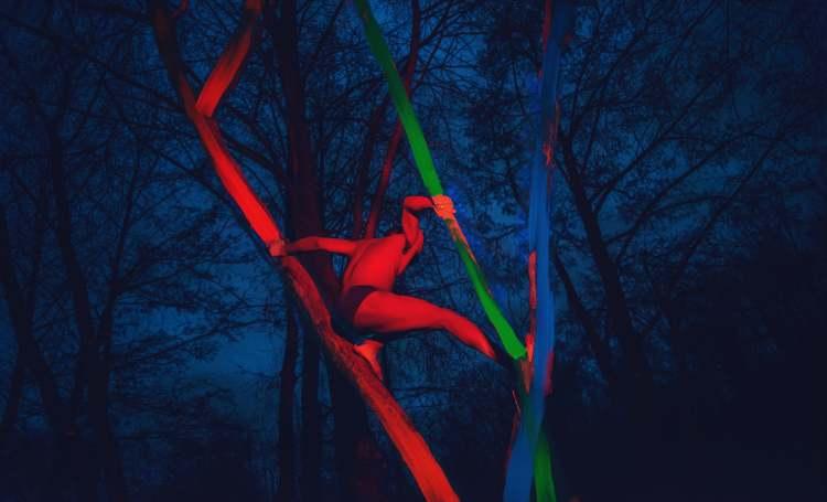 Irene Cruz   Tour Virtual   Ceart   Arte a un Click