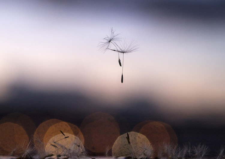 Art Photo Bcn | Arte a un click | La vida tras -la-ventana-05.-David-Cata