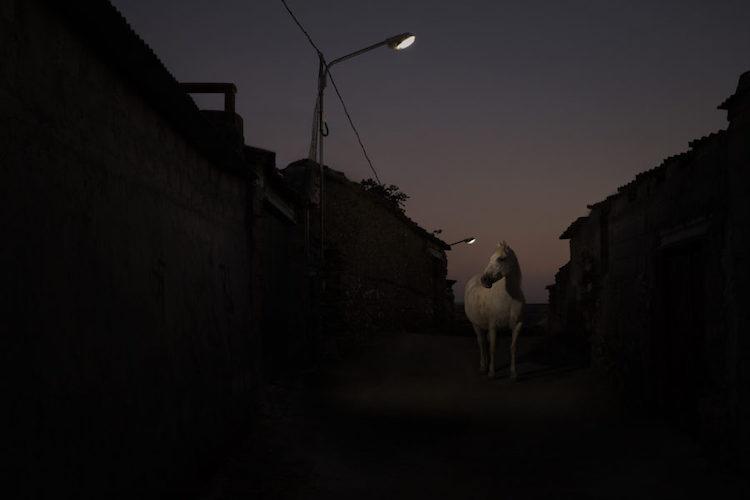 Art Photo Bcn | Arte a un Click Oskar-Alvarado_Where-Fireflies-Unfold-900x600